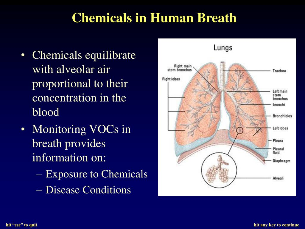 Chemicals in Human Breath