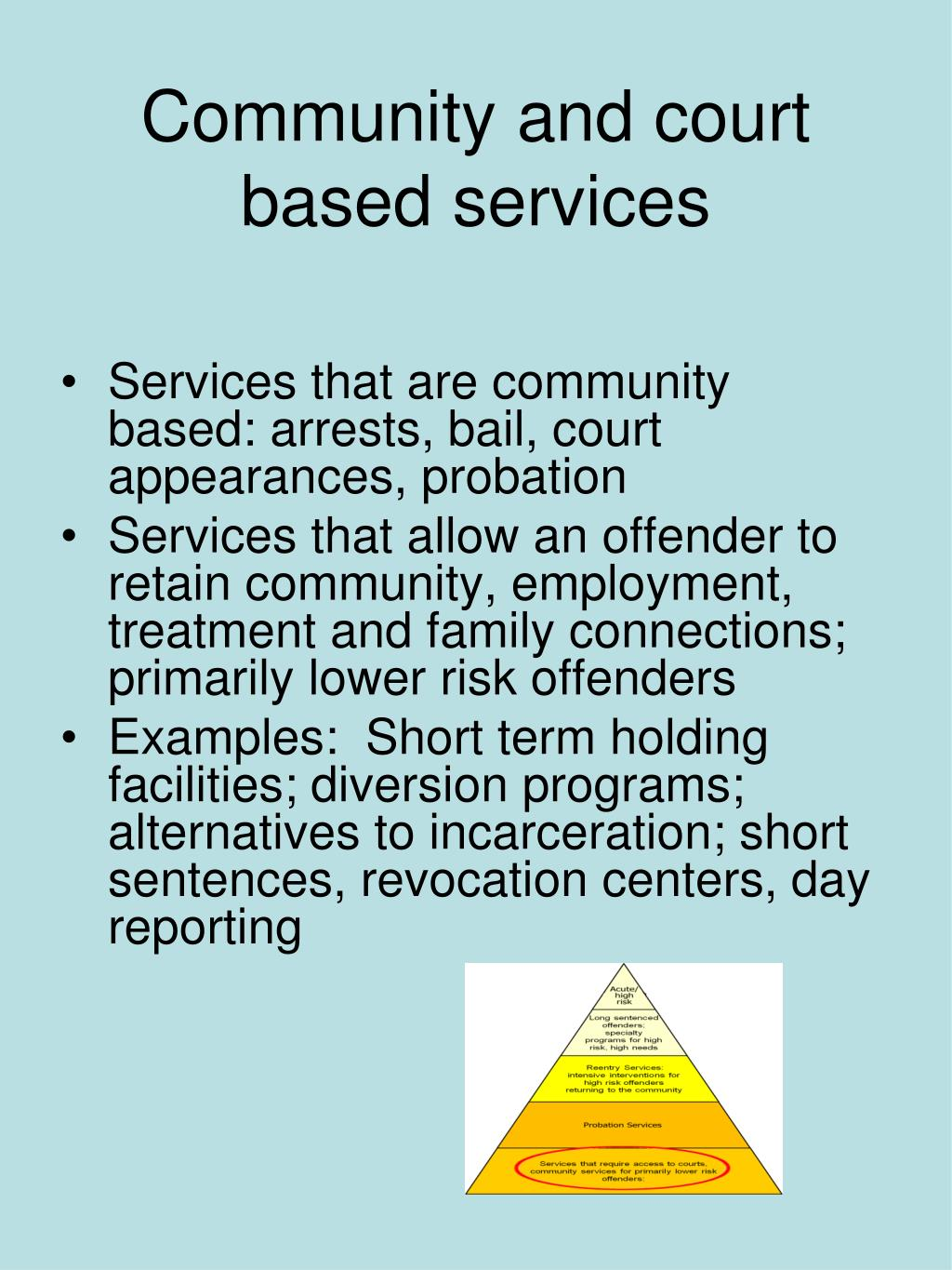 Community and court based services