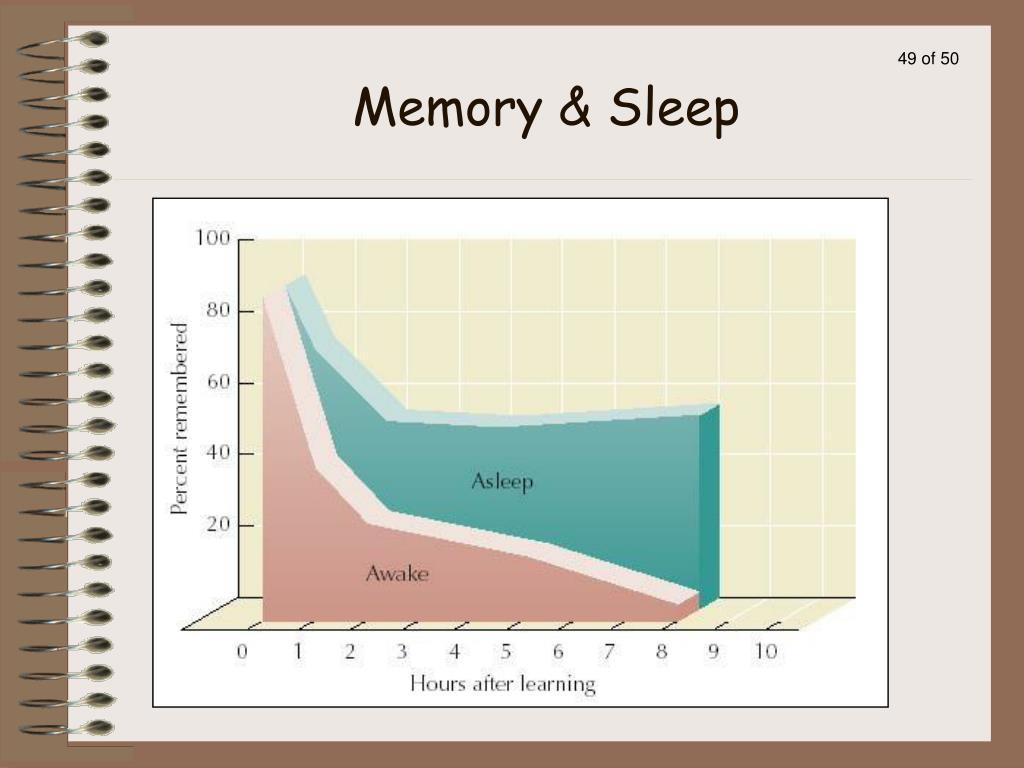 Memory & Sleep