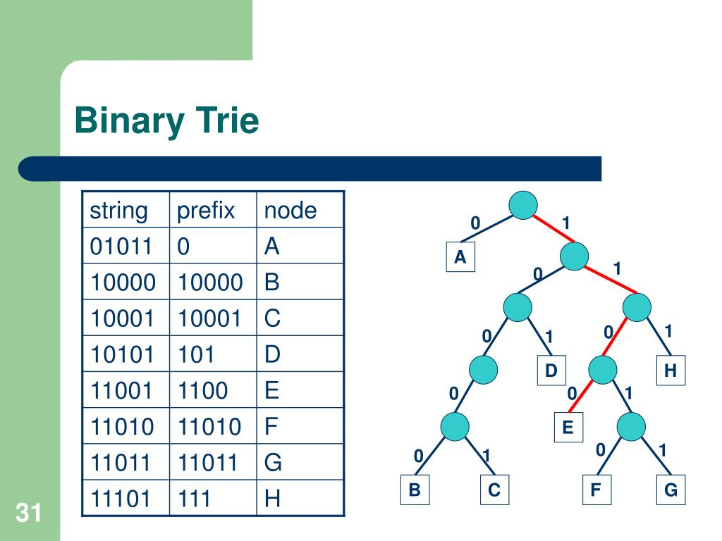 Binary Trie