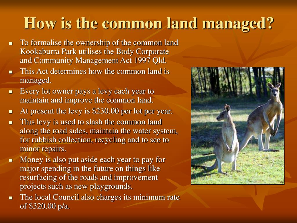 How is the common land managed?