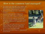 how is the common land managed