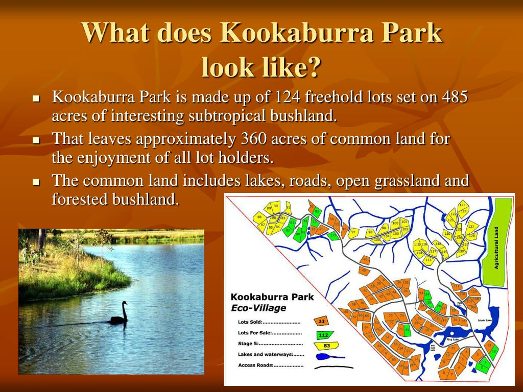 What does Kookaburra Park