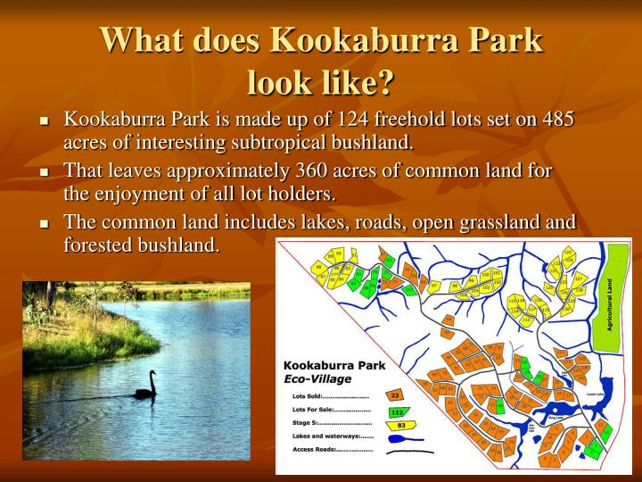 What does kookaburra park look like l.jpg