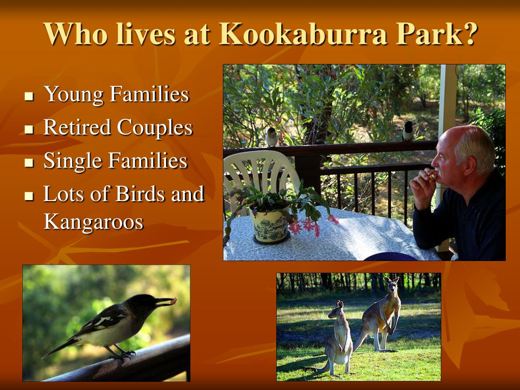 Who lives at Kookaburra Park?