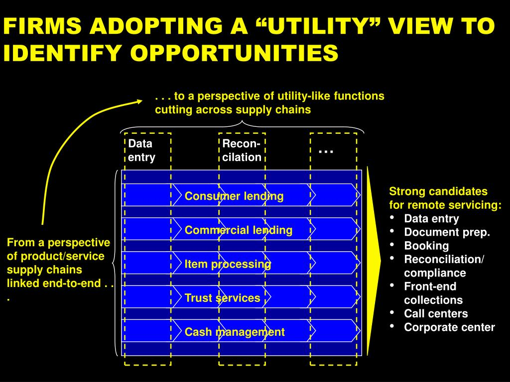 . . . to a perspective of utility-like functions cutting across supply chains