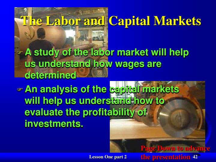 The Labor and Capital Markets