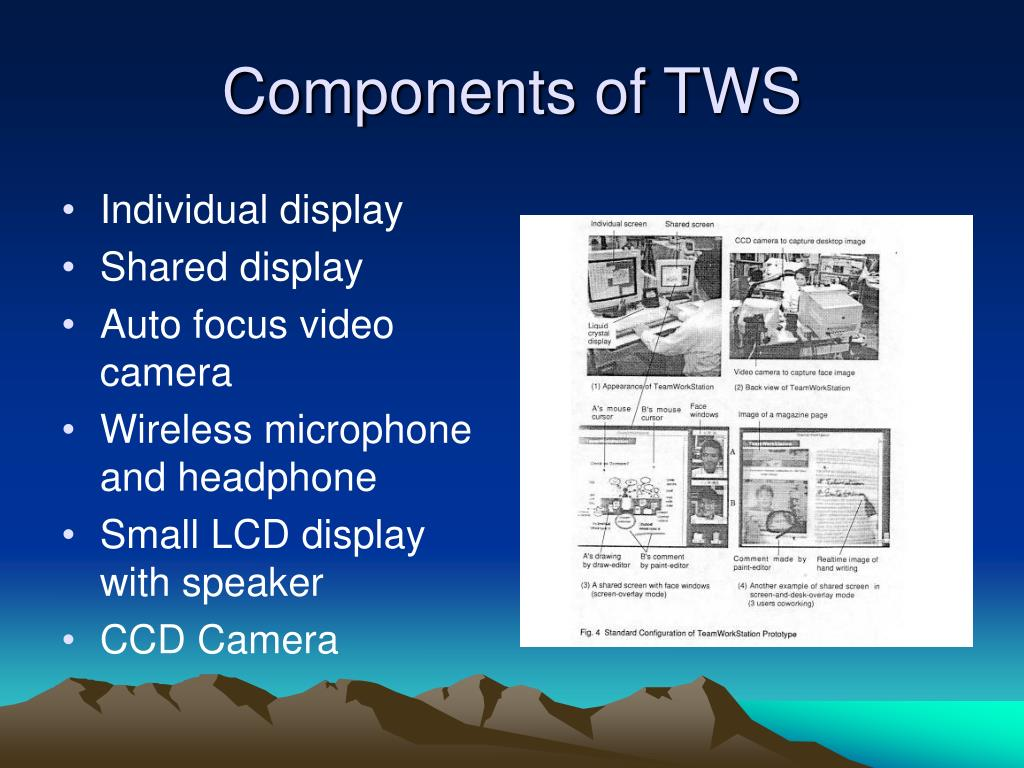 Components of TWS