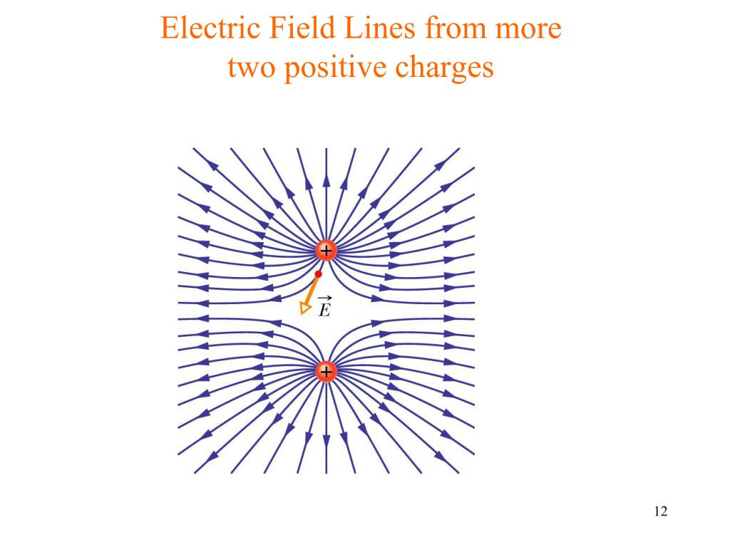 Electric Field Lines from more