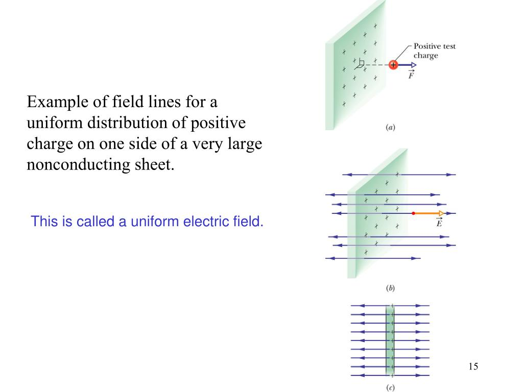 Example of field lines for a uniform distribution of positive charge on one side of a very large nonconducting sheet.