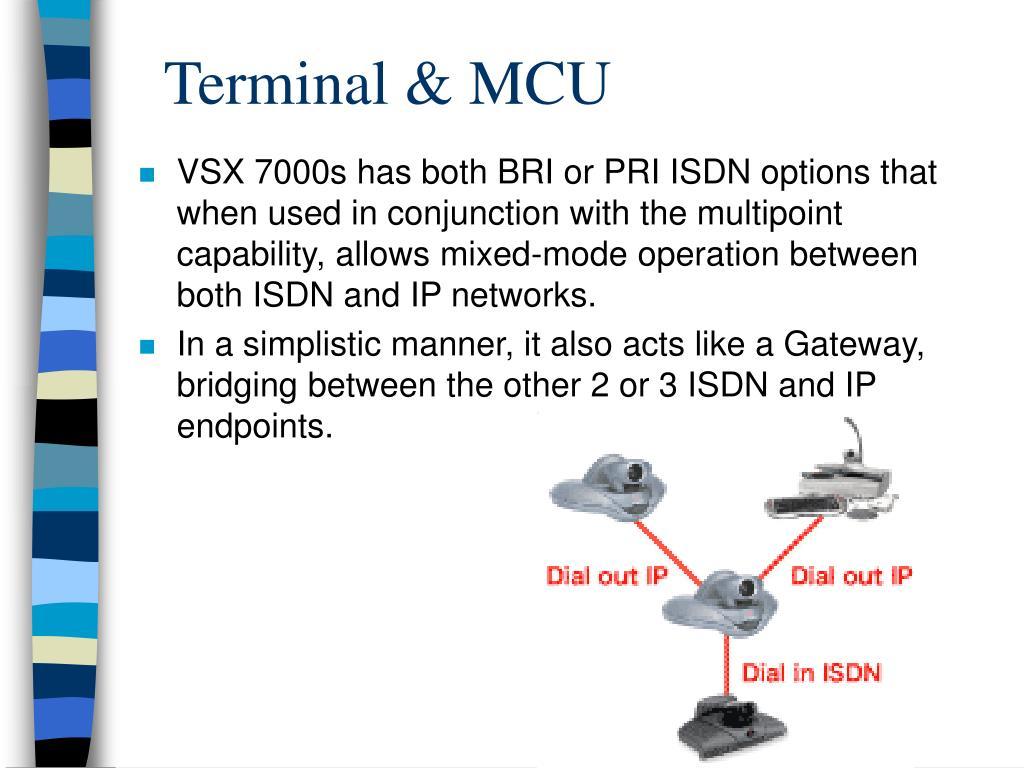 Terminal & MCU