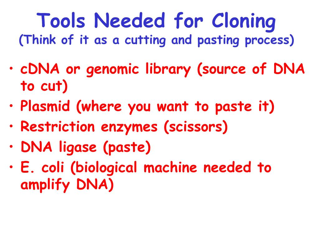 Tools Needed for Cloning