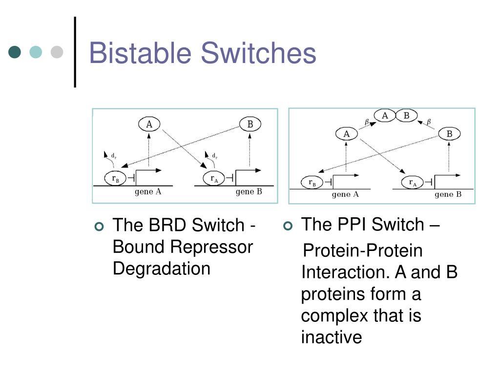 The BRD Switch - Bound Repressor Degradation