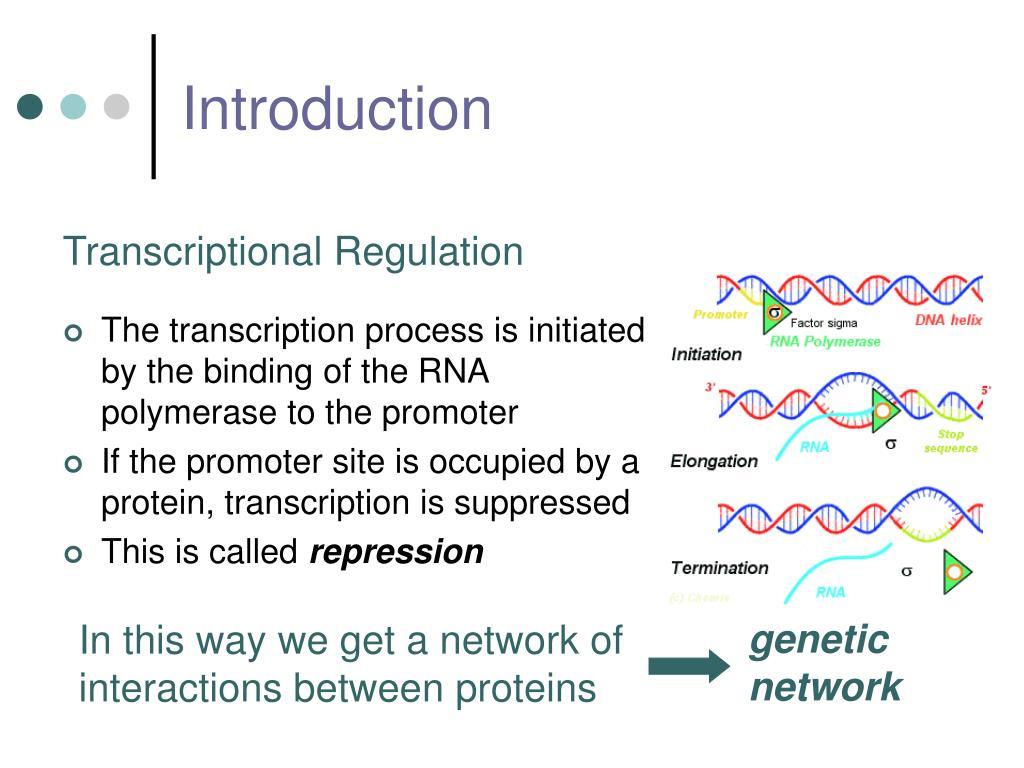 genetic network