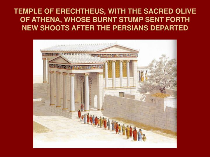 TEMPLE OF ERECHTHEUS, WITH THE SACRED OLIVE OF ATHENA, WHOSE BURNT STUMP SENT FORTH NEW SHOOTS AFTER THE PERSIANS DEPARTED