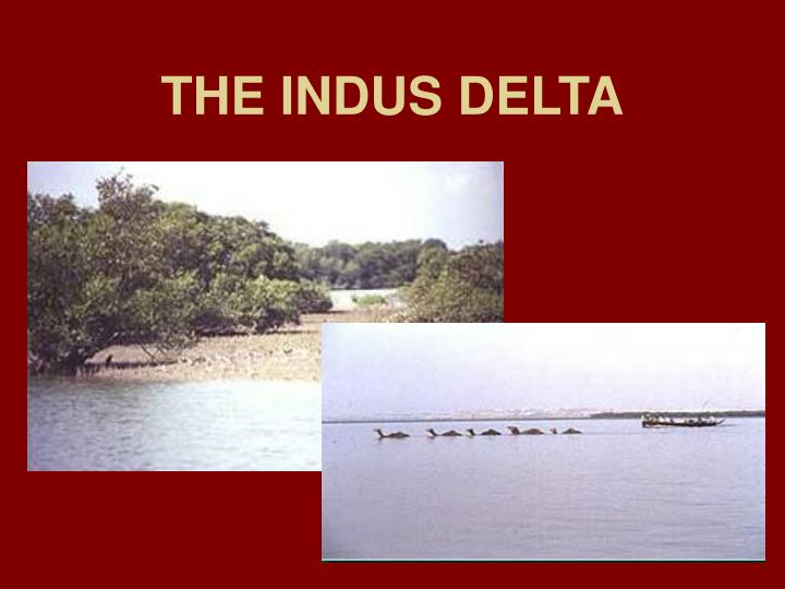 THE INDUS DELTA