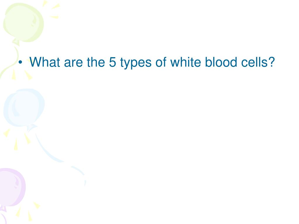 What are the 5 types of white blood cells?