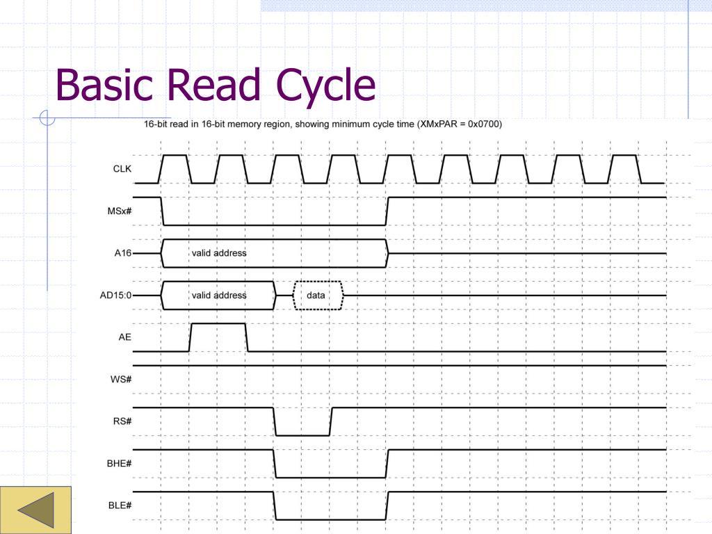 Basic Read Cycle