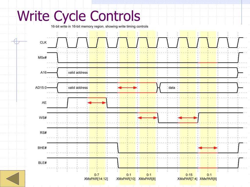 Write Cycle Controls
