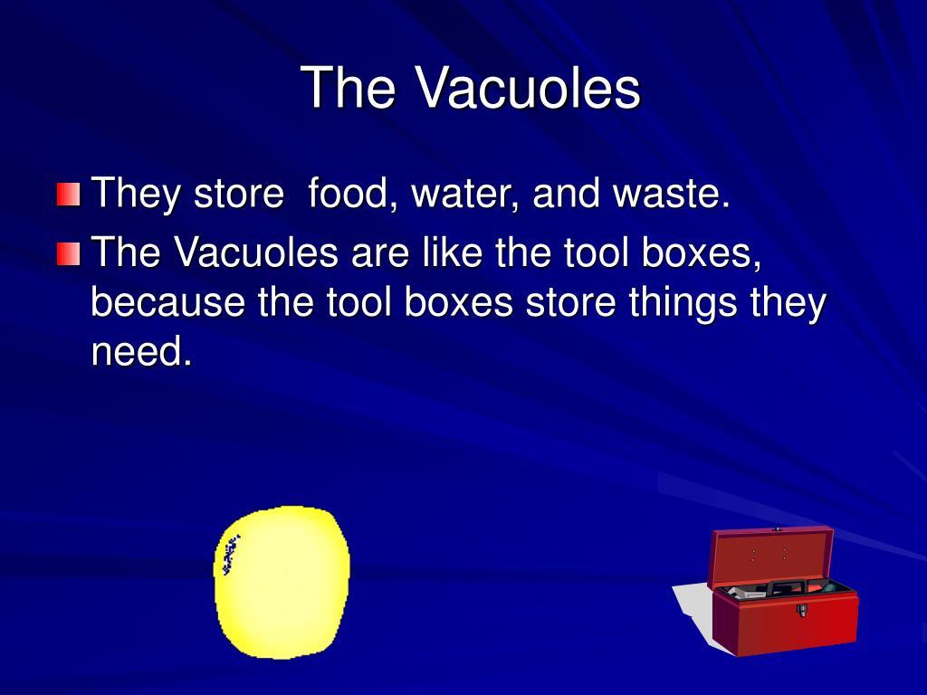 The Vacuoles