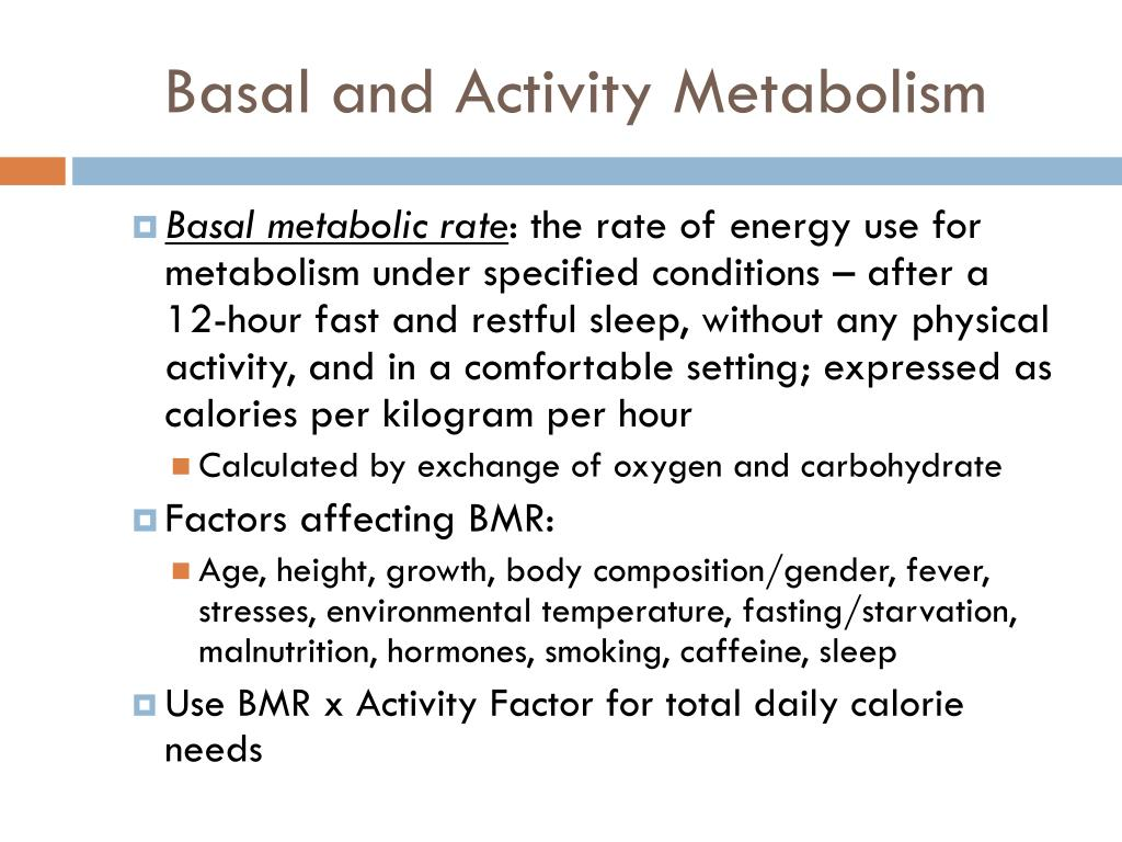 Basal and Activity Metabolism