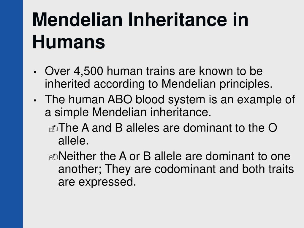 Mendelian Inheritance in Humans