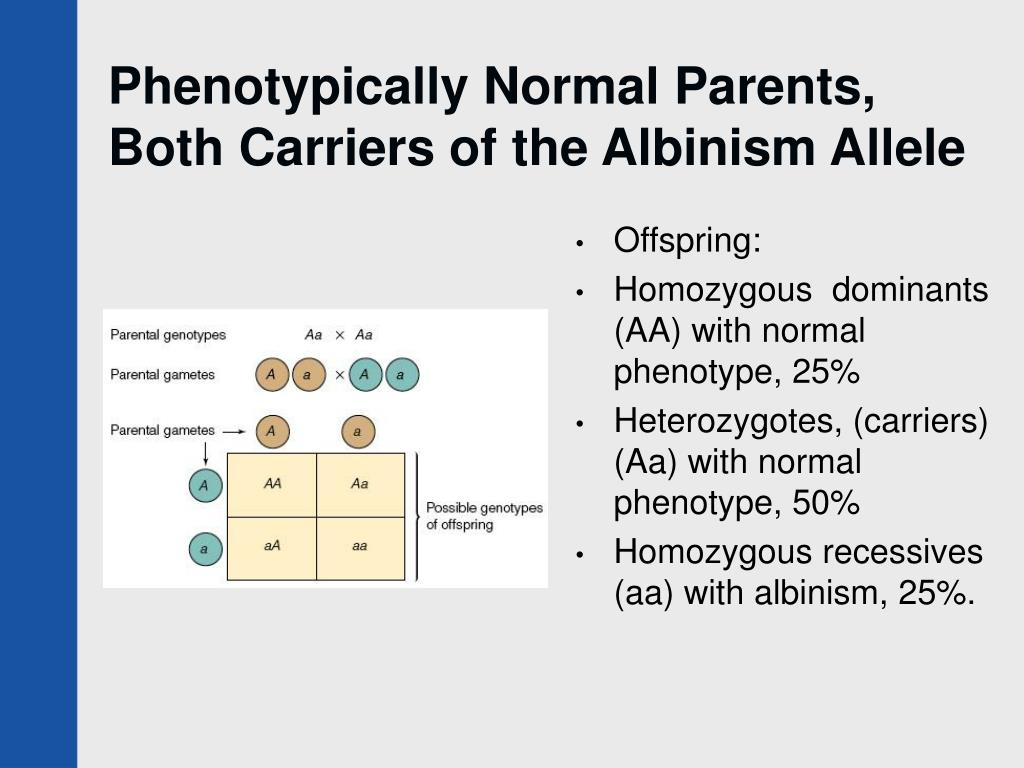 Phenotypically Normal Parents, Both Carriers of the Albinism Allele