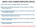 what a self funded employer can do
