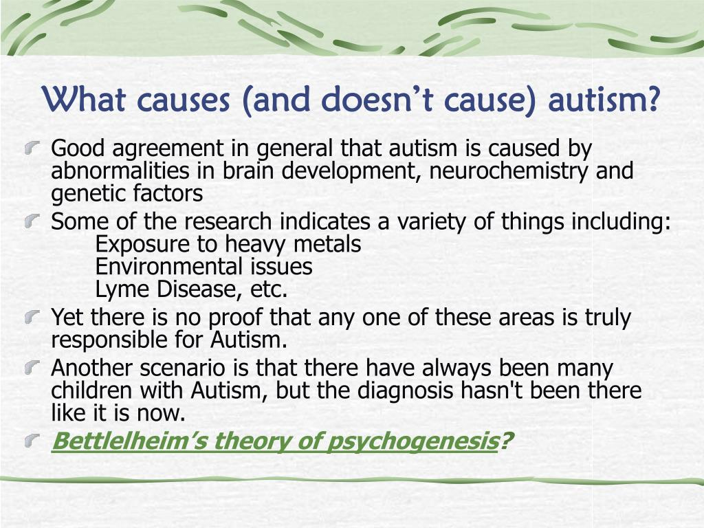 What causes (and doesn't cause) autism?