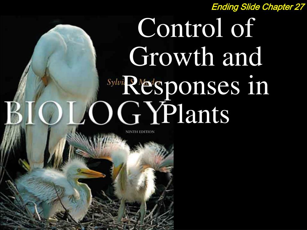 Control of Growth and Responses in Plants
