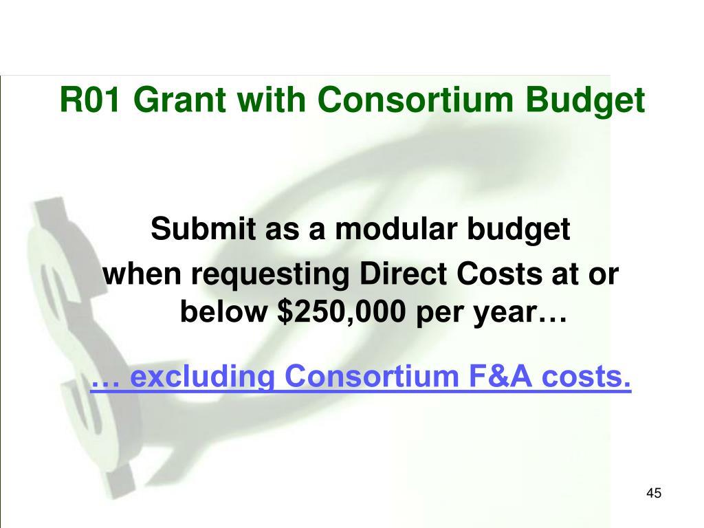 R01 Grant with Consortium Budget