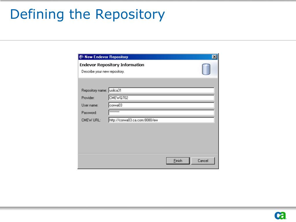 Defining the Repository