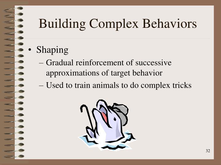 Building Complex Behaviors