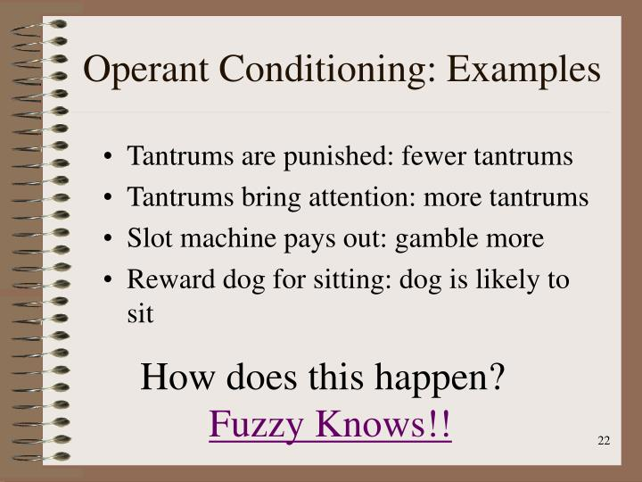 Operant Conditioning: Examples