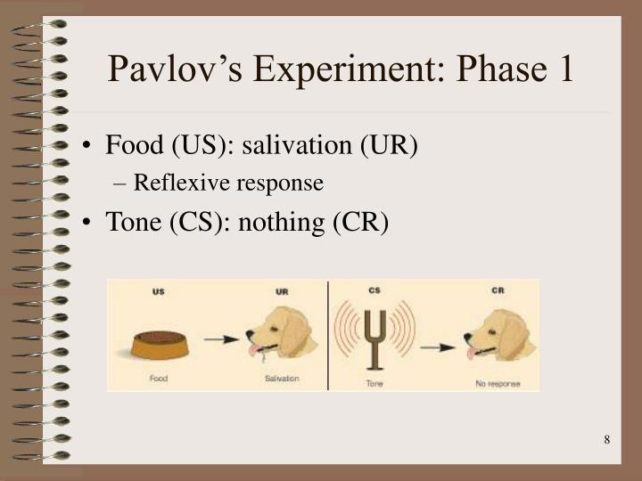 Pavlov's Experiment: Phase 1