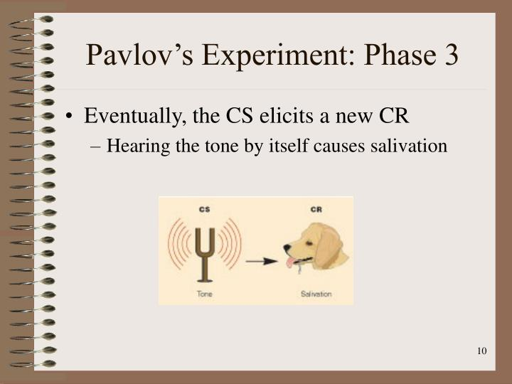 Pavlov's Experiment: Phase 3