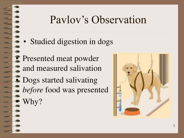 Pavlov's Observation