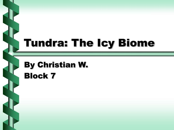 Tundra the icy biome l.jpg