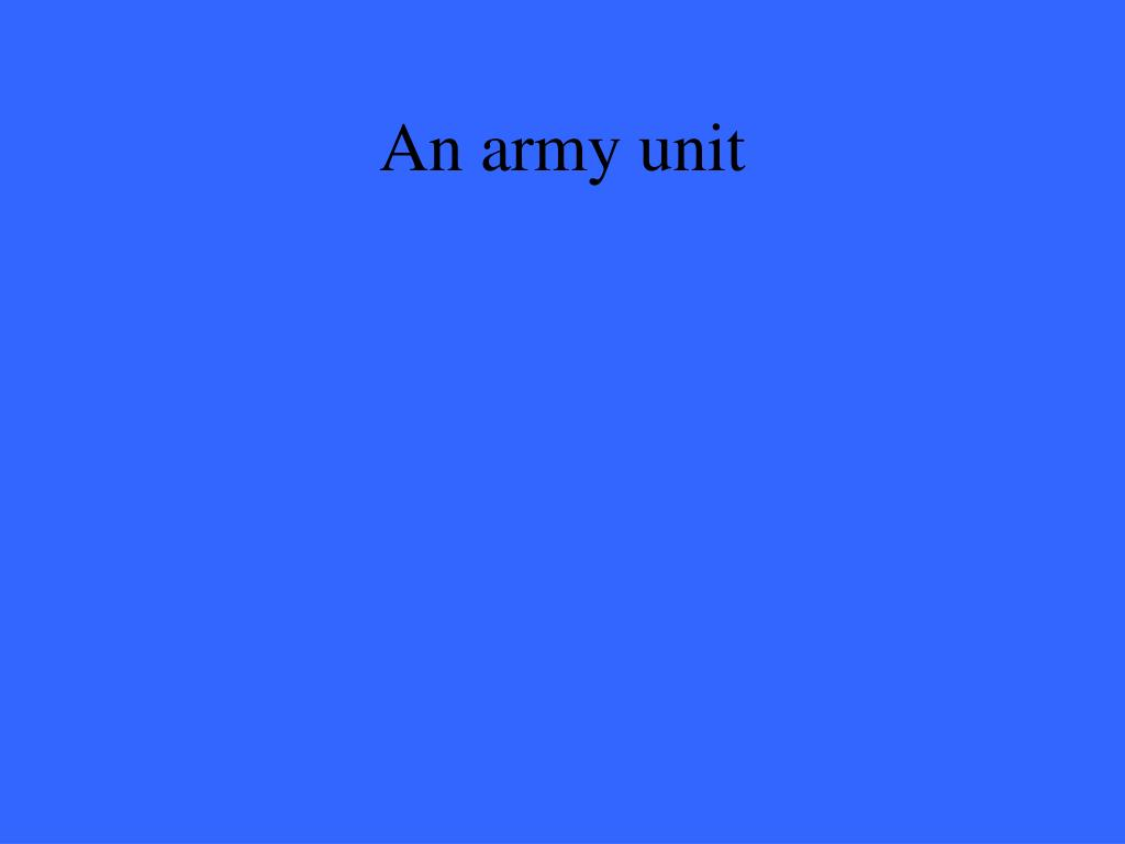 An army unit