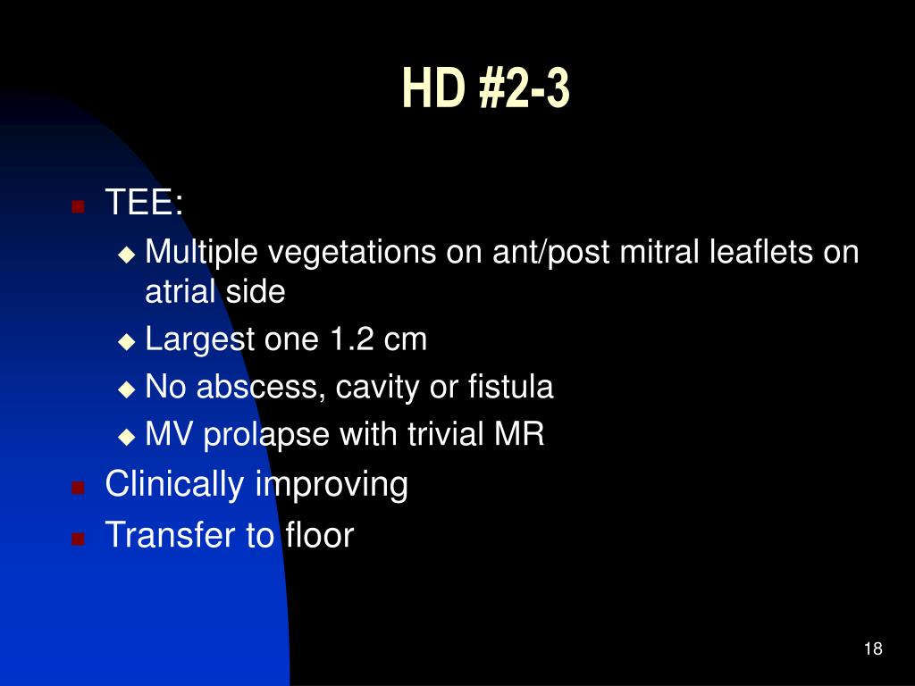 HD #2-3