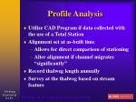 profile analysis58