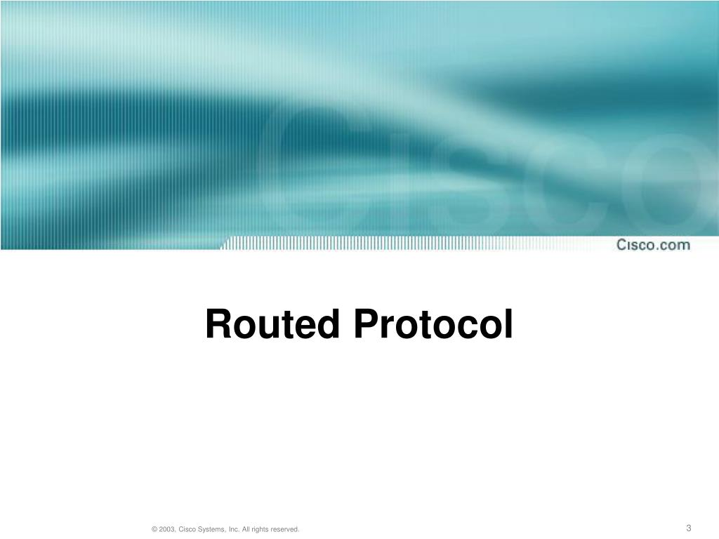 Routed Protocol
