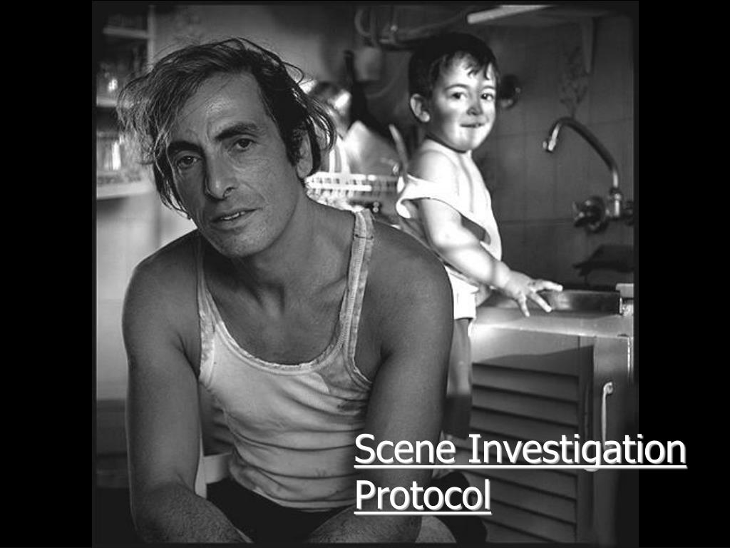 Scene Investigation