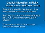 capital allocation n risky assets and a risk free asset