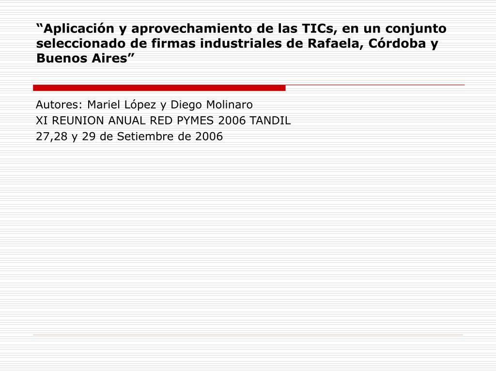 """""""Aplicación y aprovechamiento de las TICs, en un conjunto seleccionado de firmas industriales de Rafaela, Córdoba y Buenos Aires"""""""