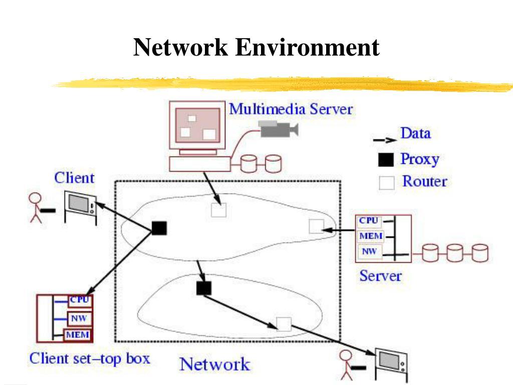 Network Environment
