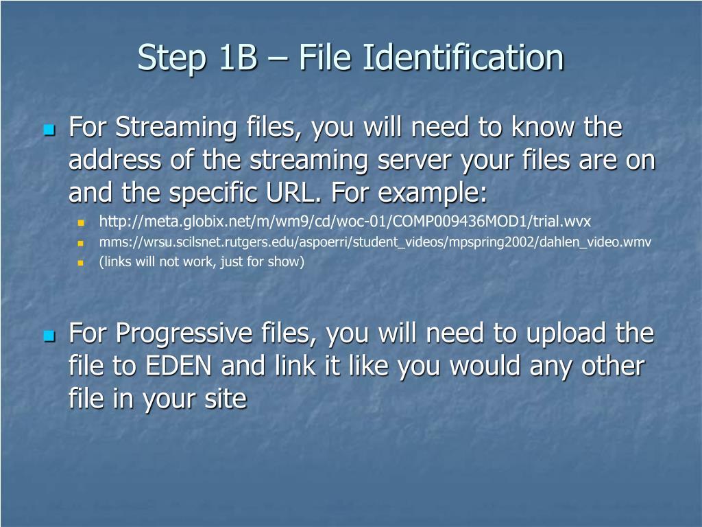 Step 1B – File Identification