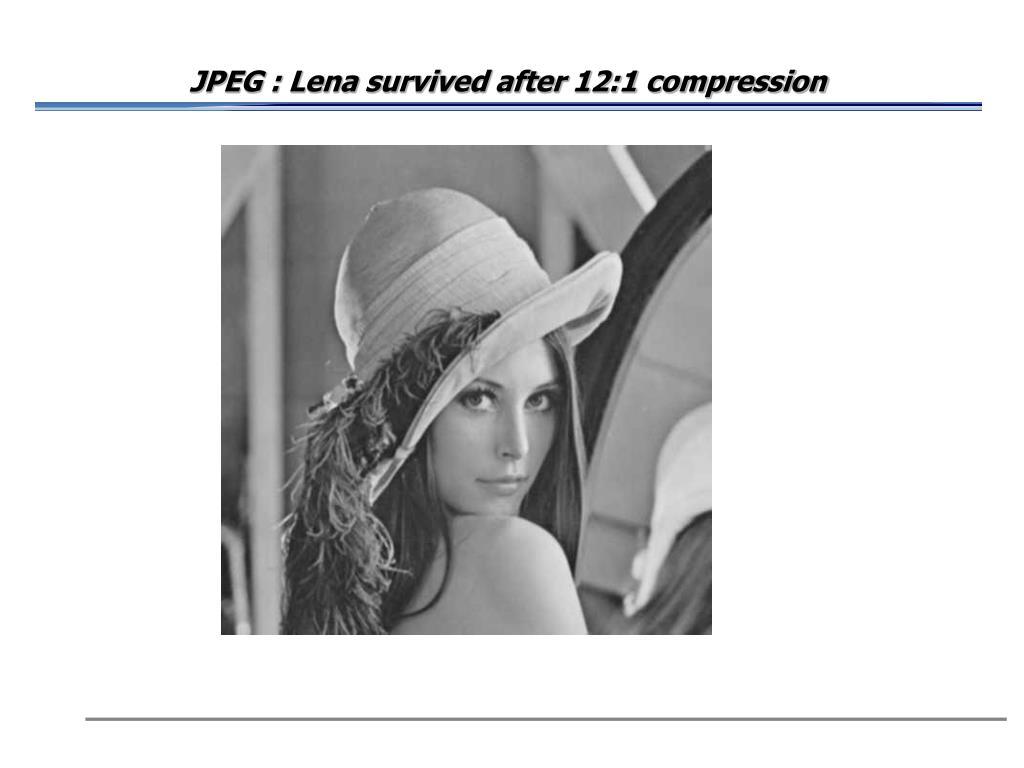 JPEG : Lena survived after 12:1 compression