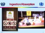 ingestion absorption