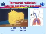 terrestrial r adiation external and internal exposure